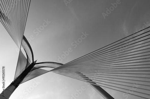 Modern bridge architecture at Putrajaya on a black and white.