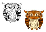 Brown and colorless cartoon owl birds poster