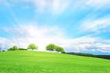 Collina verde con tre alberi e nuvole nel cielo azzurro