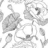 Linear seamless pattern - poppy flower. - 93390922