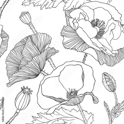 Fototapeta Linear seamless pattern - poppy flower.