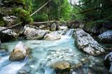 Ein wilder Bach im Märchenwald bei Ramsau