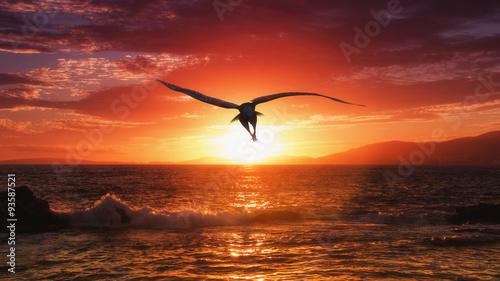 Foto op Canvas Bordeaux Eagle