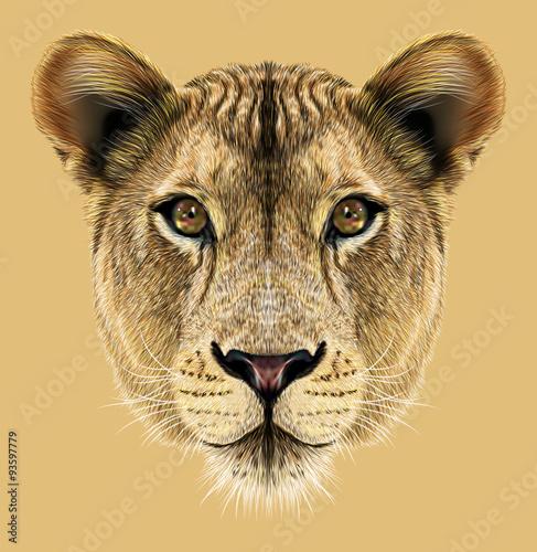 Papiers peints Hyène Portrait of Lioness. African big cat.
