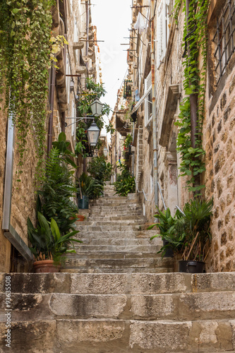 Narrow and empty alley, steps, potted plants and vines at the Old Town in Dubrovnik, Croatia, viewed from below.