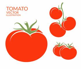 Tomato. Isolated vegetables on white background
