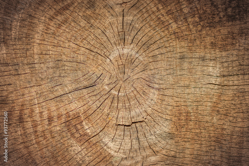 Old Wood Texture - 93772560