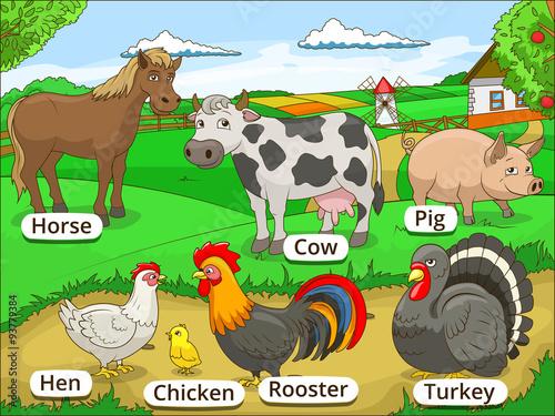 Foto op Canvas Boerderij Farm animals with names cartoon educational