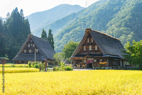 Gassho Zukuri Houses in Suganuma area of Gokayama, Japan (五箇山 菅沼合掌造り)