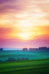 Landscape with sunset over cultivated field © Vitaliy