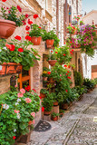 Full of flower porch in small town in Italy, Umbria
