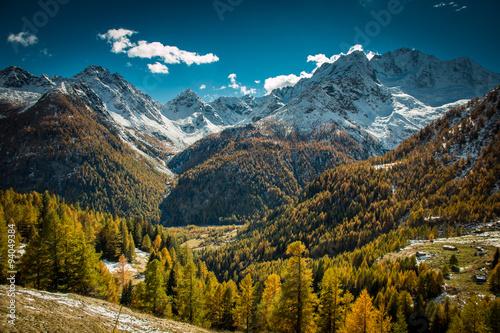 alpine landscape in autumn - Chiareggio - Italy
