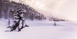 paesaggio invernale incantato