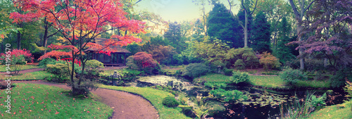Fototapeta autumn in Japanese park, panorama