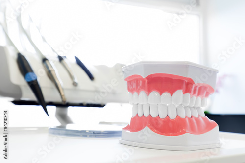Clean teeth denture, dental jaw model in dentist's office.
