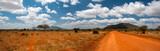 Landscape of Tsavo East, Kenya © forcdan