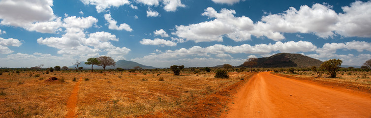 Landscape of Tsavo East, Kenya © forcdan