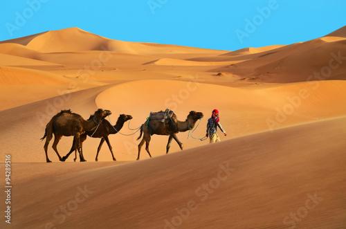 Fotobehang Kameel Caravan in desert