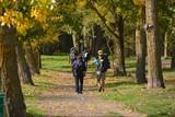 caminando bajo los arboles en otoño
