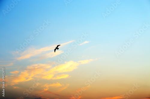 Foto op Plexiglas Landschappen Beautiful sunrise sky view
