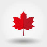 Fototapety Red maple leaf icon.