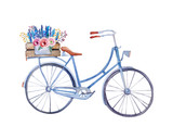 Fototapety watercolor vintage  bicycle with box of flowers.