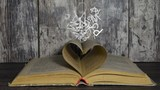 Concept of love for book. Letters flying out of book