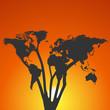 World Map Tree at Sunset