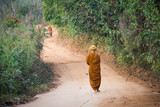 Alms Round of Buddhist Monk in Thailand.