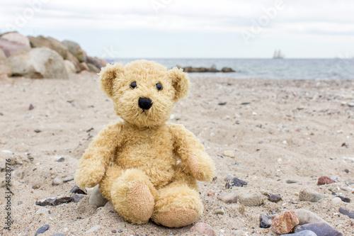 obraz PCV teddy bear / A teddy bear sits on a stone on the Baltic beach