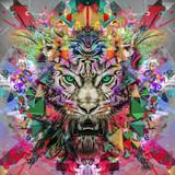 тигр - 94840796