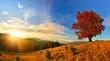 Obrazy na płótnie, fototapety, zdjęcia, fotoobrazy drukowane : Autumn highland
