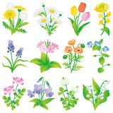 春の花 いろいろ