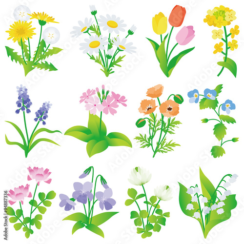 Zdjęcia na płótnie, fototapety, obrazy : 春の花 いろいろ