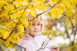 Portrait of little girl with autumn leaves, autumn outdoor