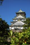 Osaka castle.