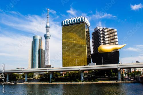 Fototapeta Skyline of Tokyo with the skytree tower.
