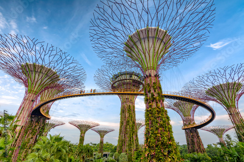 Gardens by the Bay - Singapore Poster