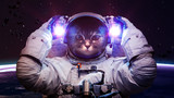 Fototapety Beautiful cat in outer space. Elements of this image furnished by NASA