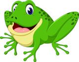 Cartoon cute frog of illustration