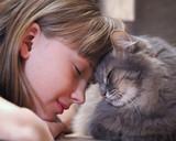 Кот и девочка нос к носу. Нежность, любовь, дружба. Милая и добрая фотография о дружбе ребенка и кота