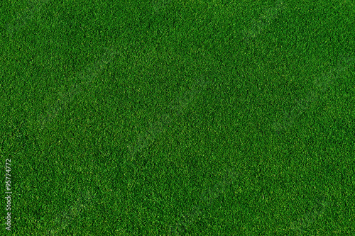 Foto op Canvas Groene real green grass background