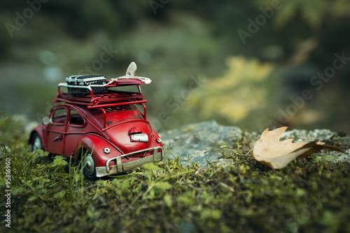 Chrząszcz volkswagen