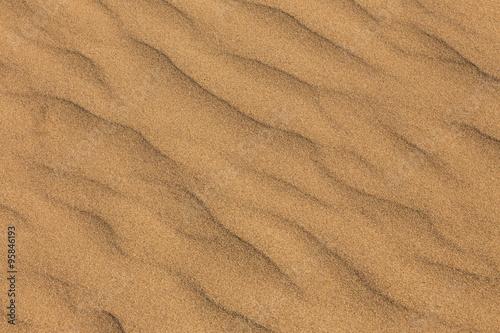 Poster 砂丘 Dune