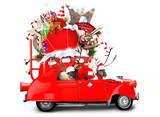 Santa Claus with reindeer in a car with gifts