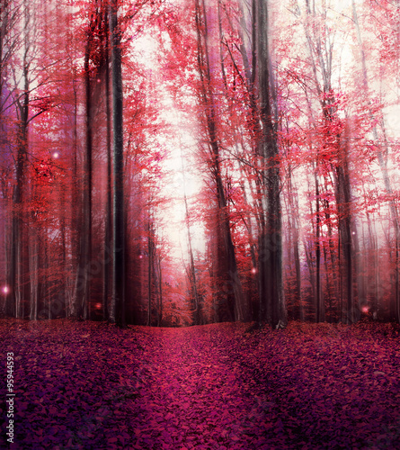 Plakat Red Magic Misty Forest with Mysterious Lights