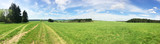 Panorama of country road in the green grass field, Orlic mountains, Czech republic