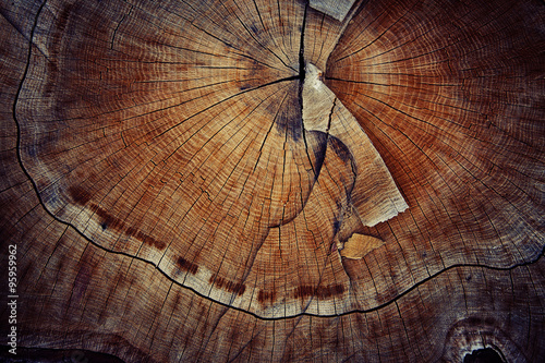 wood cut texture ring - 95959962