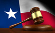 Texas Law Legal System Concept