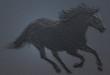 Obrazy na płótnie, fototapety, zdjęcia, fotoobrazy drukowane : illustration of a horse running with blue background and a raised texture